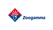 zoogamma time lapse video cantiere